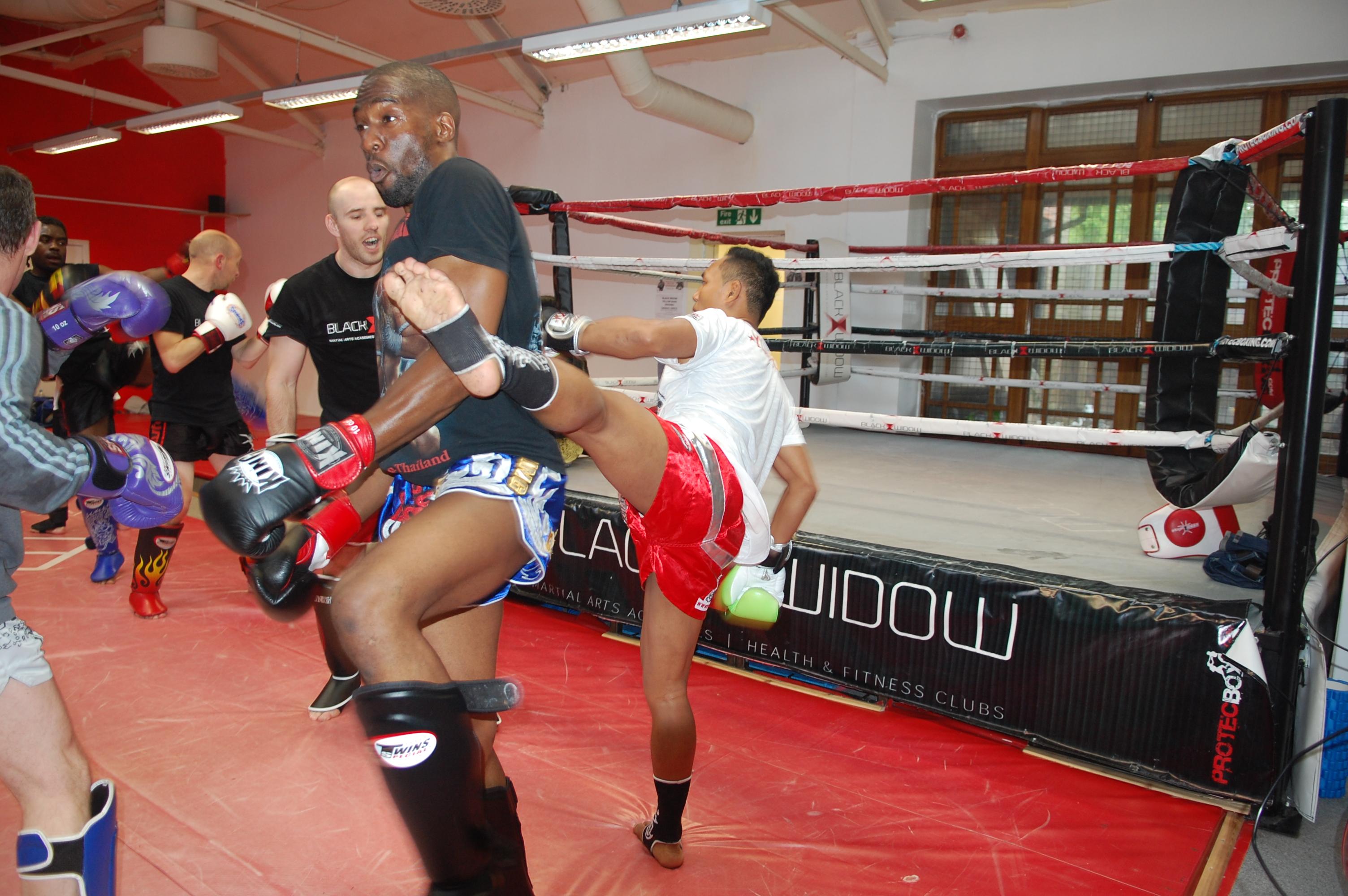 Black-widow-martial-arts-57