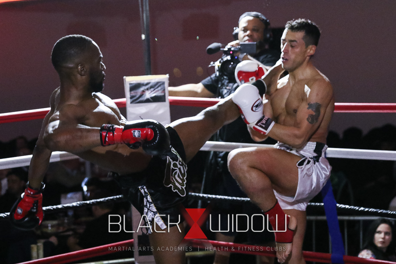 Black-widow-martial-arts-17