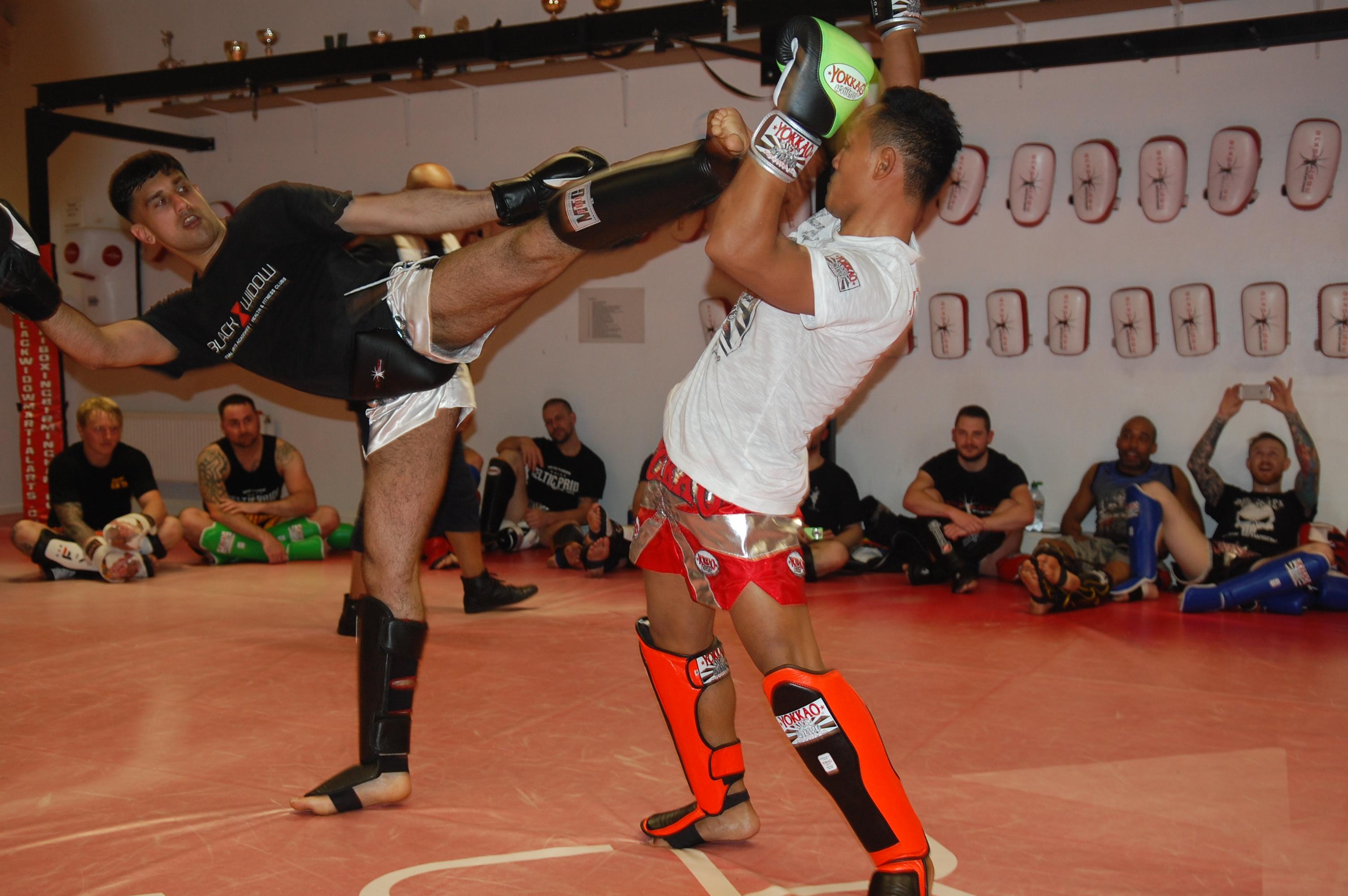 Black-widow-martial-arts-47
